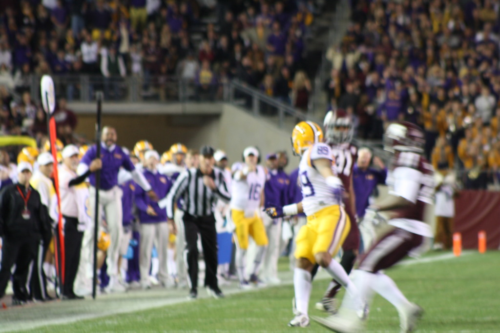 One of the LSU coaching jumping in the back ground......  got excited about the play as LSU DeSean Smith was double teamed.